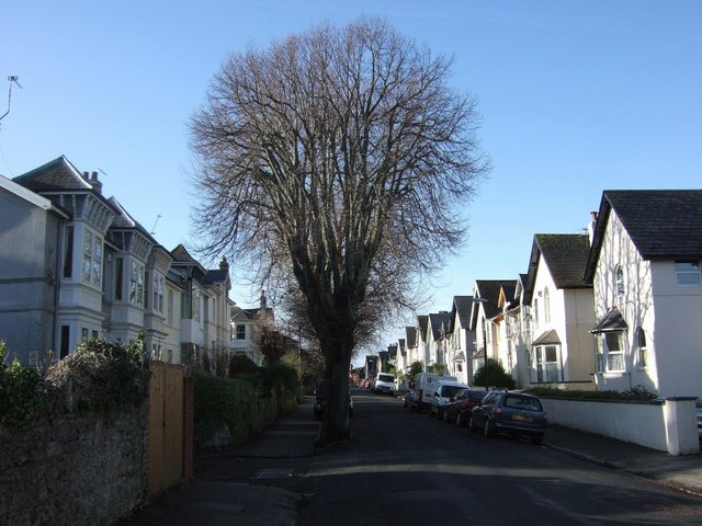 thurlow_road_torquay_-_geograph-org-uk_-_661117
